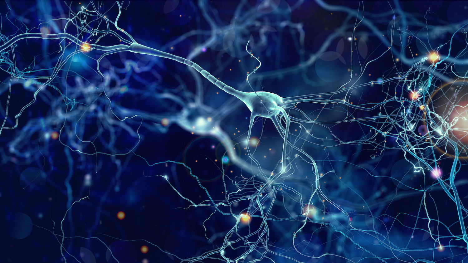 brain-synapses-img